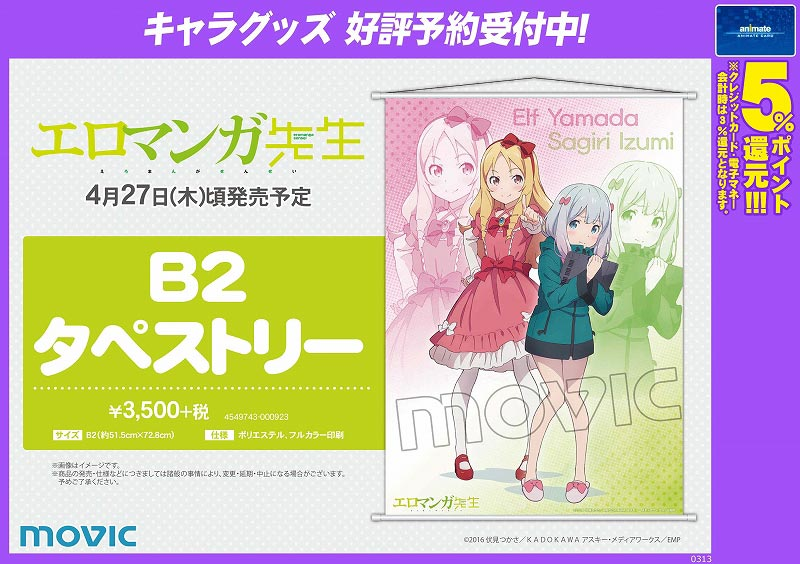 A_170427_eromanga_tapesutori_CO